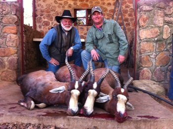 June 2011 Blesbok Hunt