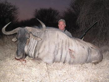 August 2011 Blue Wildebeest Hunt