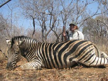 September 2012 Zebra Hunt
