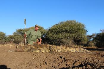 June 2013 Crocodile Hunt