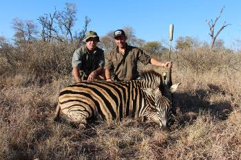 June 2013 Zebra Hunt