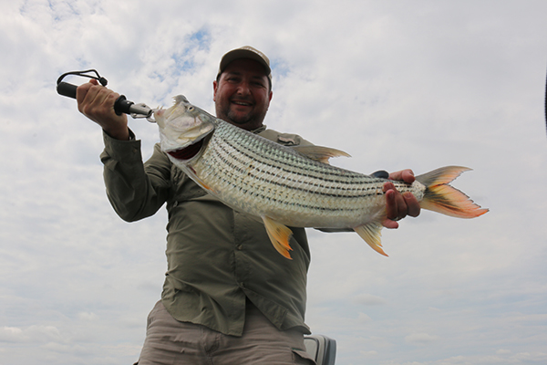 Tiger Fish Zambezi
