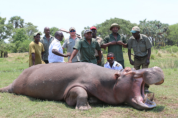 Hippo Hunted from the Zambezi Valley