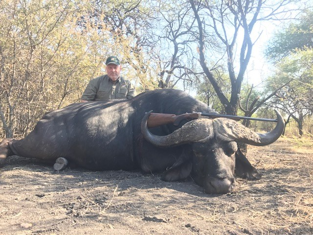 "40""+ Cape Buffalo Hunt"