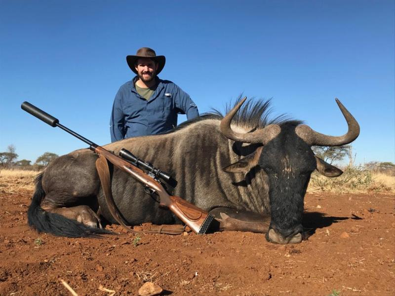 Blue Wildebeest Plains Game Safari